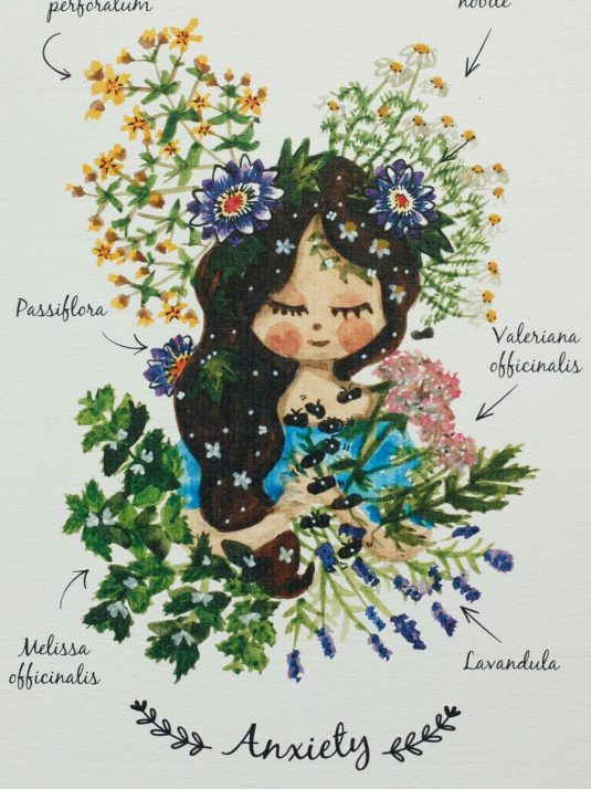 Warmsquirrel herbal recipe how to help with anxiety art print