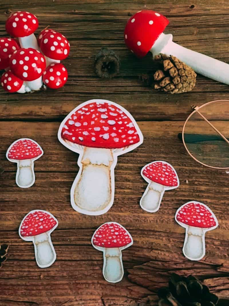 WarmSquirrel Amanita Muscaria Mushroom Stickers