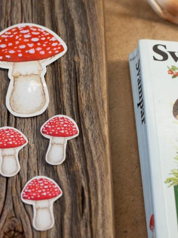 amanita muscaria mushroom-sticker set of 6 stickers