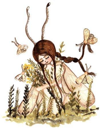 WarmSquirrel Moth Fairy Print By Warmsquirrel Jennifer Ramirez