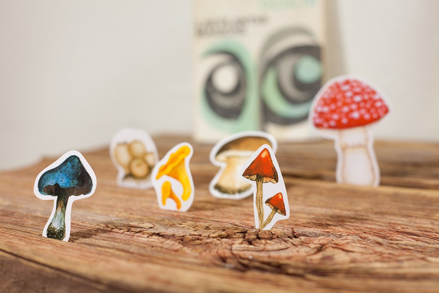 mushroom sticker set including 6 different autumn mushrooms standing in a table