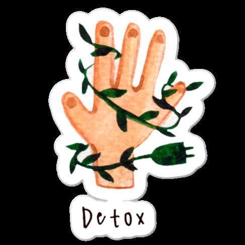 WarmSquirrel Detox Mockup Default Default X