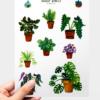 WarmSquirrel Indoor Plants Sticker Pack By Warmsquirrel