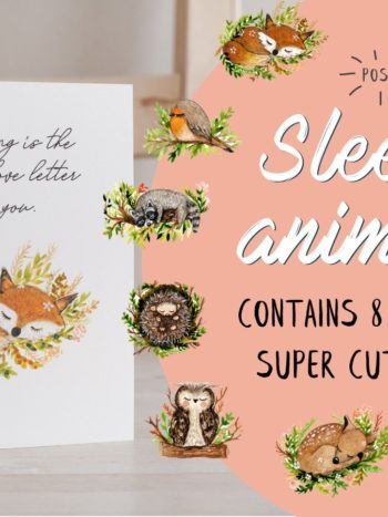 WarmSquirrel Sleepy Animal Card Bundle
