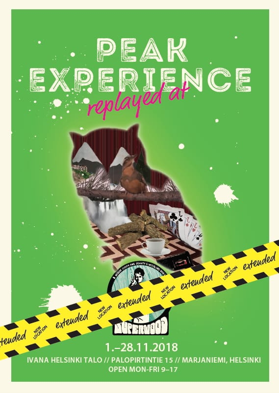 POster of Peak experience replayed at Ivana Helsinki house