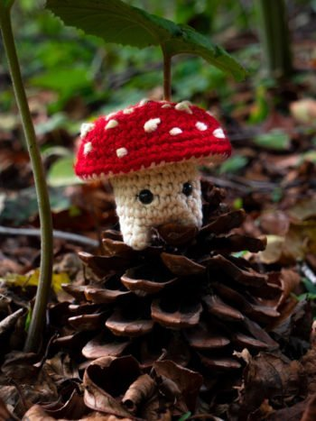 WarmSquirrel Amanita Muscaria Amigurumi
